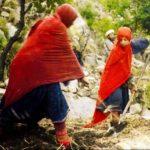 آواز زنان نورستان